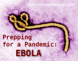 www.HerbalPrepper.com | Prepping for a Pandemic: Ebola | Herbs for ebola | Is Ebola Airborne | What Would Happen if Ebola broke out in US