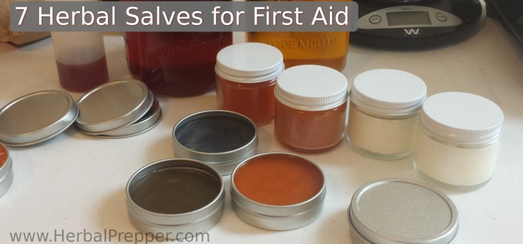 7 Herbal Salves for First Aid
