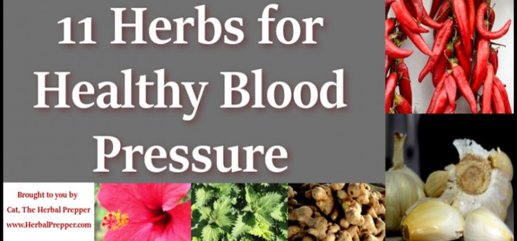 11 Herbs for Healthy Blood Pressure