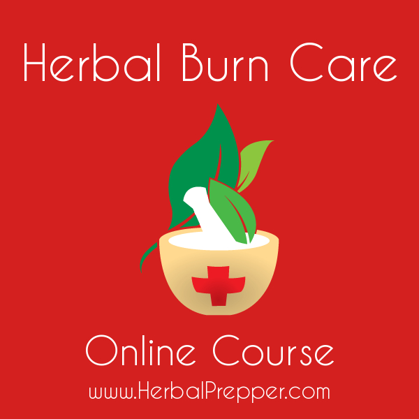 Herbal Burn Care Course | Online Herbal Education | www.HerbalPrepper.com
