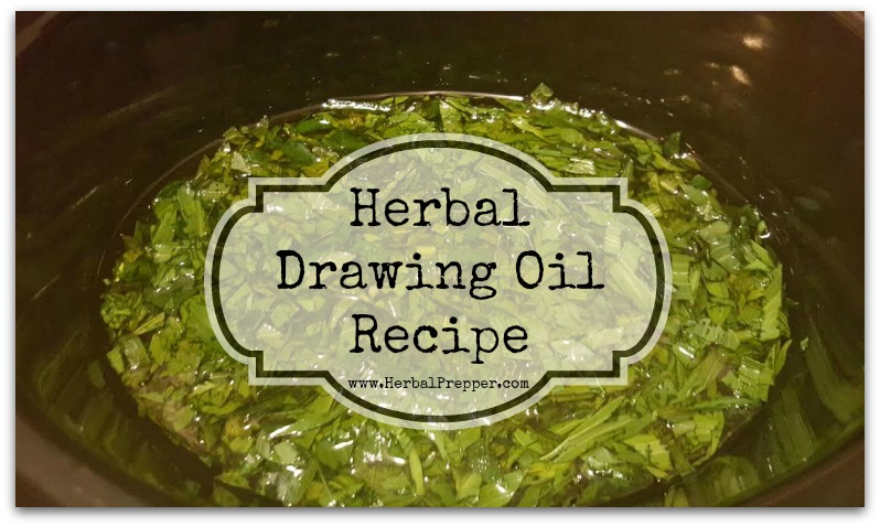 Herbal Drawing Oil 1a
