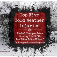 Top Five Cold Weather Injuries | First aid and herbal medicine | Chilblains| Trench Foot | Frostbite | Hypothermia | Heart Attack | www.HerbalPrepper.com
