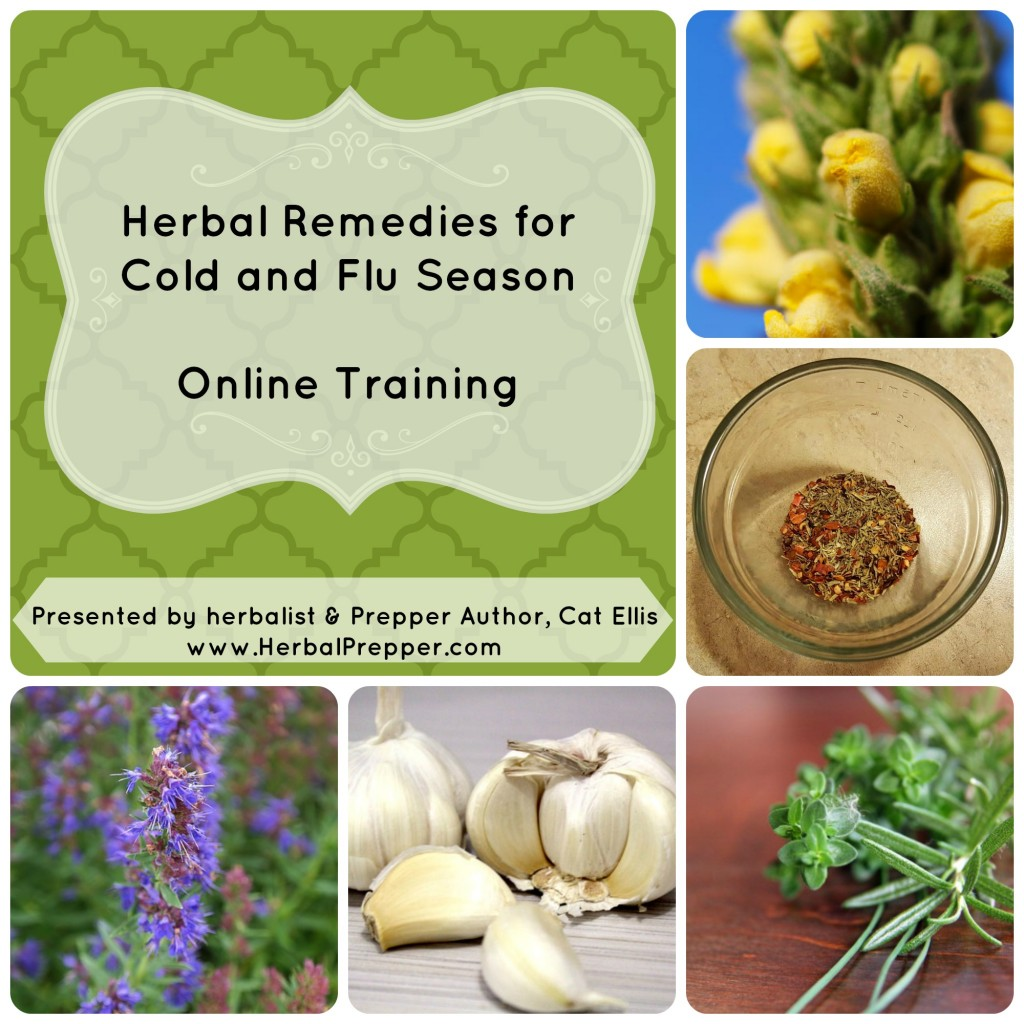Herbal Remedies For Cold & Flu Online Training, 2/25/16