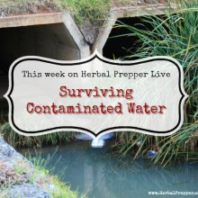 Surviving Contaminated Water | Herbal Prepper Live | Prepper Broadcasting
