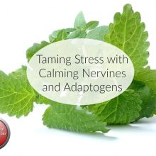 Taming Stress with Calming Nervines and Adaptogens | Herbal Prepper Live | Cat Ellis, Herbalist & Preparedness Author | Prepper Broadcasting | www.HerbalPrepper.com
