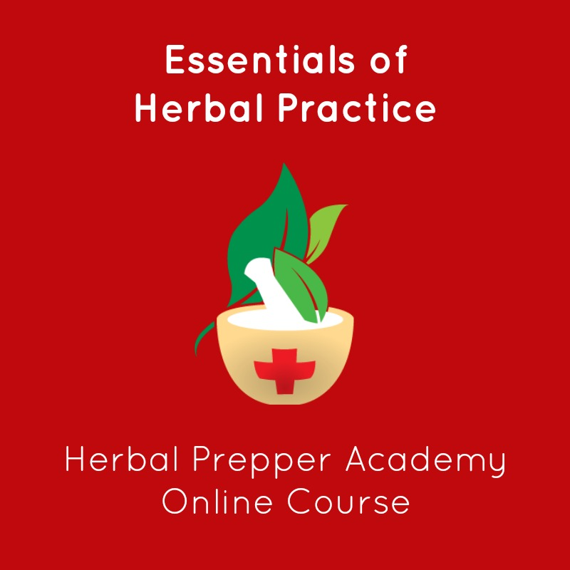 Essentials of Herbal Practice | Learn herbs online | Herbal Certifiation Program | Herbal Prepper Academy | www.HerbalPrepper.com
