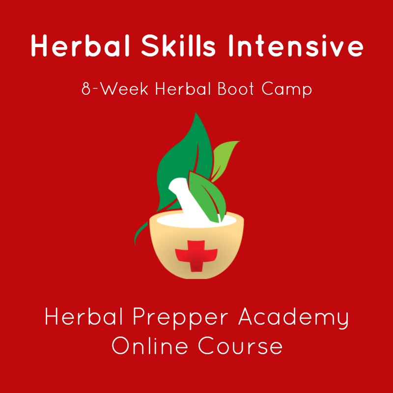 Herbal Skills Intensive | 8 Week Herbal Boot Camp| Herbal Prepper Academy | Online Course | Learn Herbs Online | Cat Ellis | www.HerbalPrepper.com