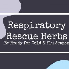 Herbs for Cold and Flu Relief | Cold and Flu | Herbal Prepper Live | Prepper Broadcasting | www.HerbalPrepper.com