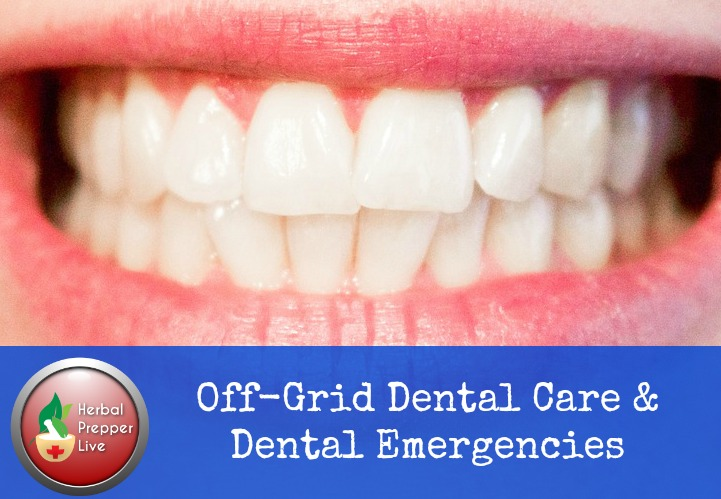 Off-Grid Dental Care and Emergency Oral Care | Herbalist Cat Ellis | Herbal Prepper Live | Prepper Broadcasting | www.HerbalPrepper.com