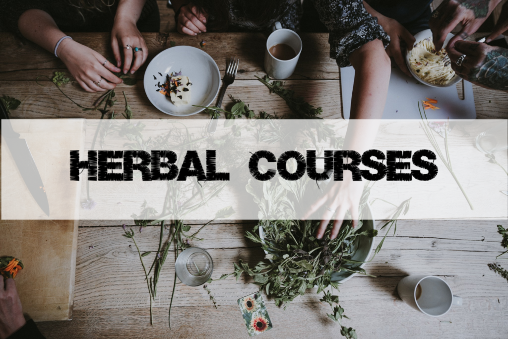 Herbal Courses